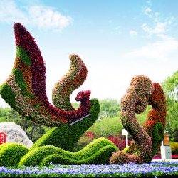 绿雕造型百变的城市活雕塑