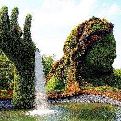 绿雕雕塑与园艺的完美融合
