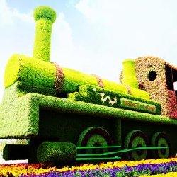 绿雕给每个人生活更美好的绿色
