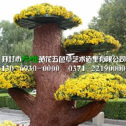 石家庄菊展菊花造型