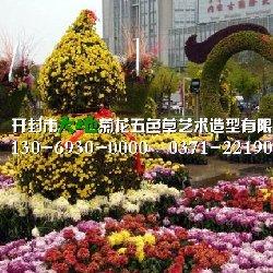 内蒙菊花造型欣赏
