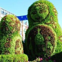 长沙立体花坛造型是不是憨态可掬