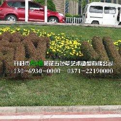 新乡五色草造型