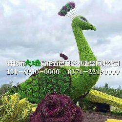 邯郸五色草造型
