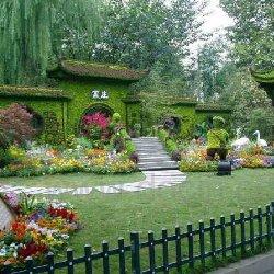 公园五色草造型组摆